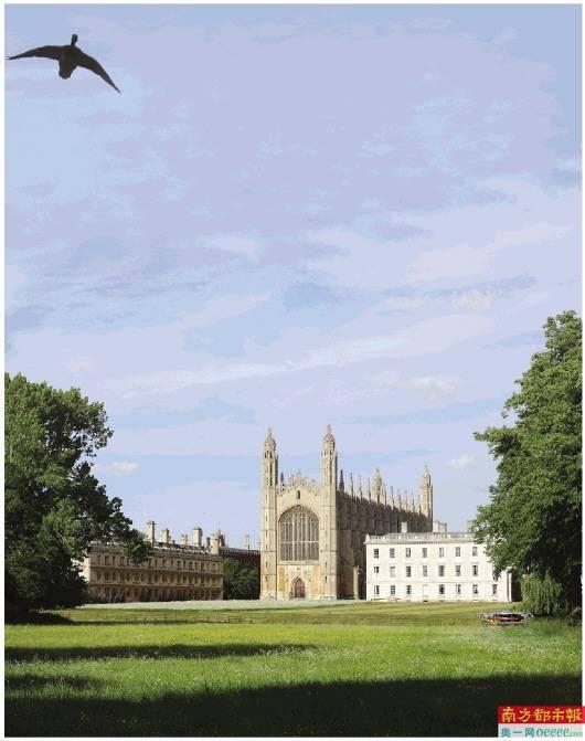 新政策!英国招国际留学生人数不设上限