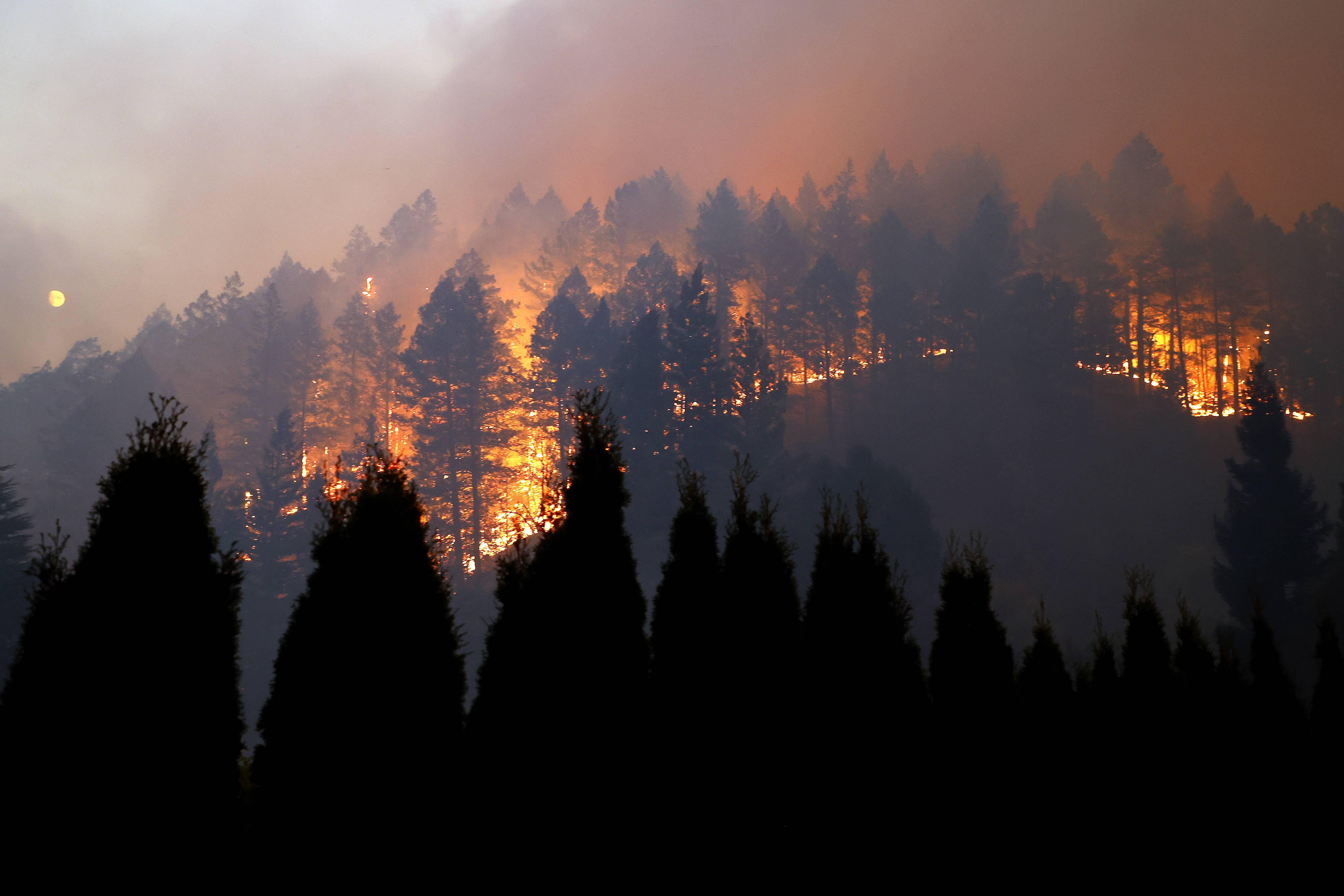 美国加州连续山火肆虐
