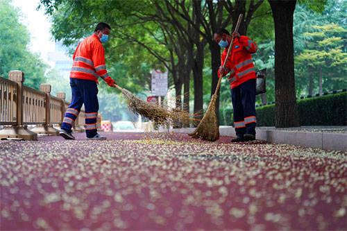 公共交通 地铁 卫生.北京有18000名农民在