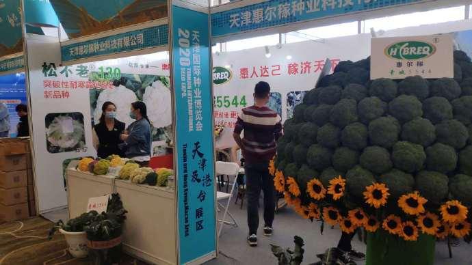 2020年天津国际种业博览会今天开幕