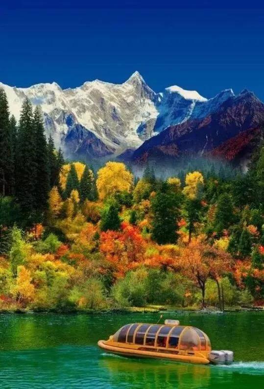 错过了桃花,林芝的秋也美成了一幅画