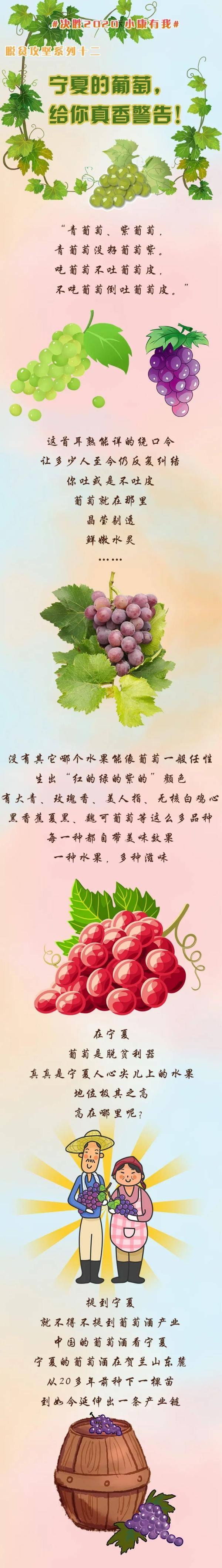 宁夏人吃葡萄不吐葡萄皮?