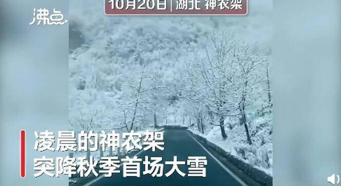 神农架一夜秋雪满山变白头,网友齐呼:太美了,像仙境