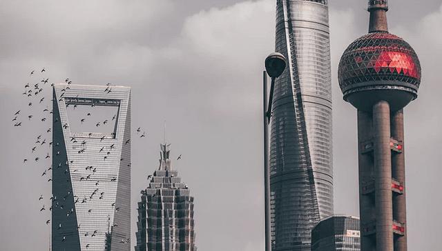"""上海如何吸引外商投资?秘诀不仅仅是跨国公司集体""""打CALL"""""""