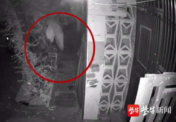 惊险!男子忘带钥匙攀爬翻窗回家,癫痫发作从四楼坠落……