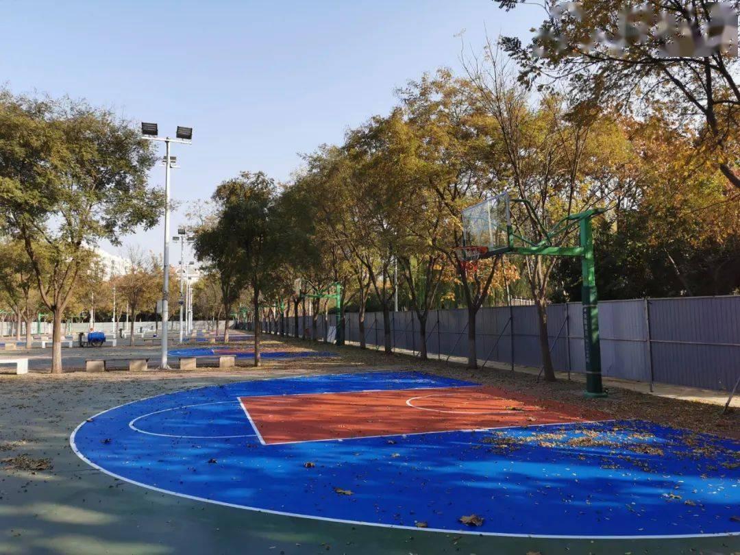 桓台这处篮球场地11月19日恢复免费开放!