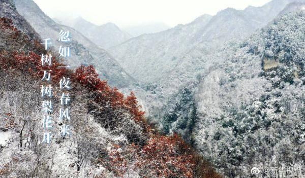 今日小雪节气,快来看看诗词里的雪景!