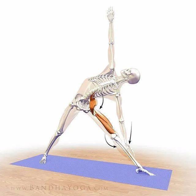 想要保持年轻?这 9 个强壮骨骼的瑜伽体式要常练!
