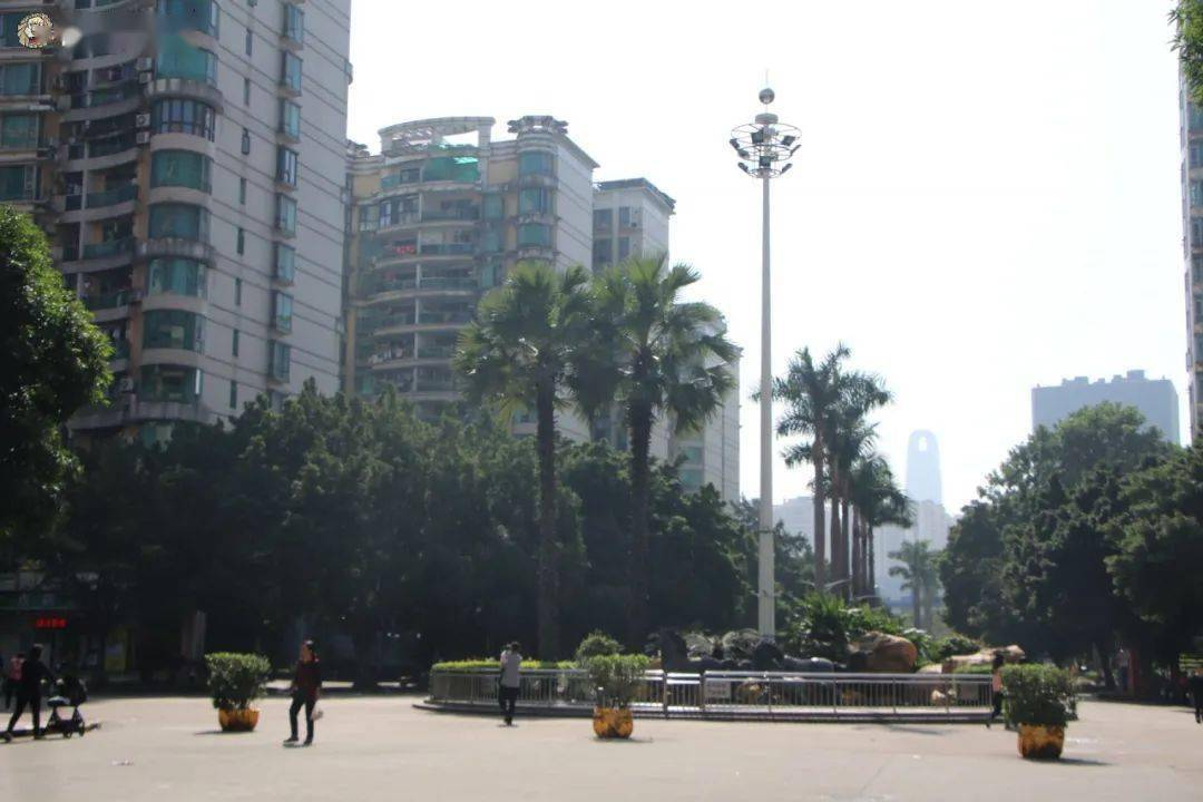 广州小区人口_广州城市人口热力图