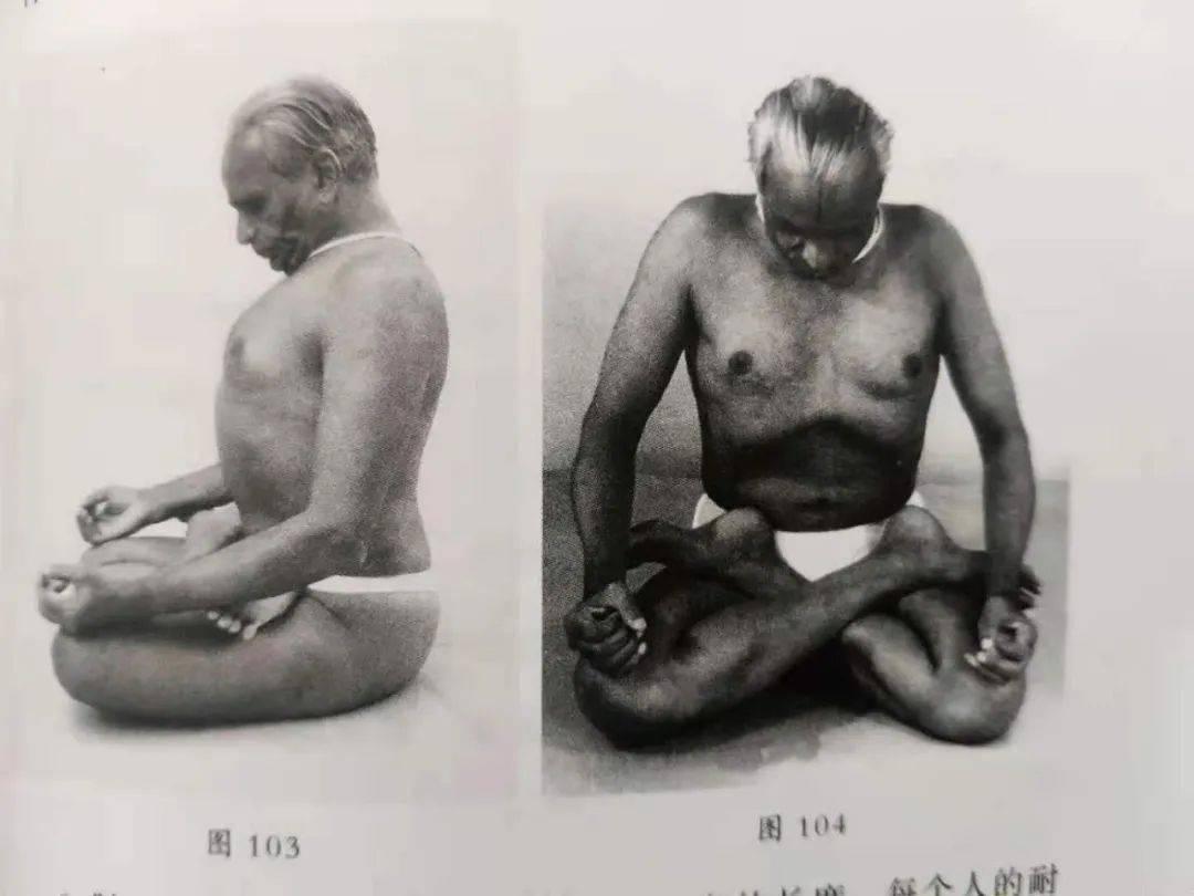 坐着瘦肚子, 只要每天5分钟, 让你脂肪刷刷掉 || 瑜伽呼吸_躯干