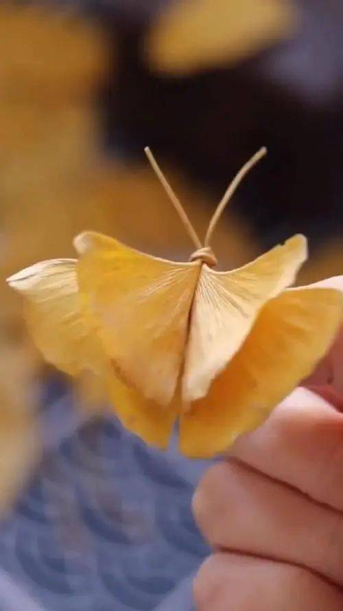 《【天游测速注册】美哉,这一地金黄,靓哉,银杏叶版手工玫瑰》