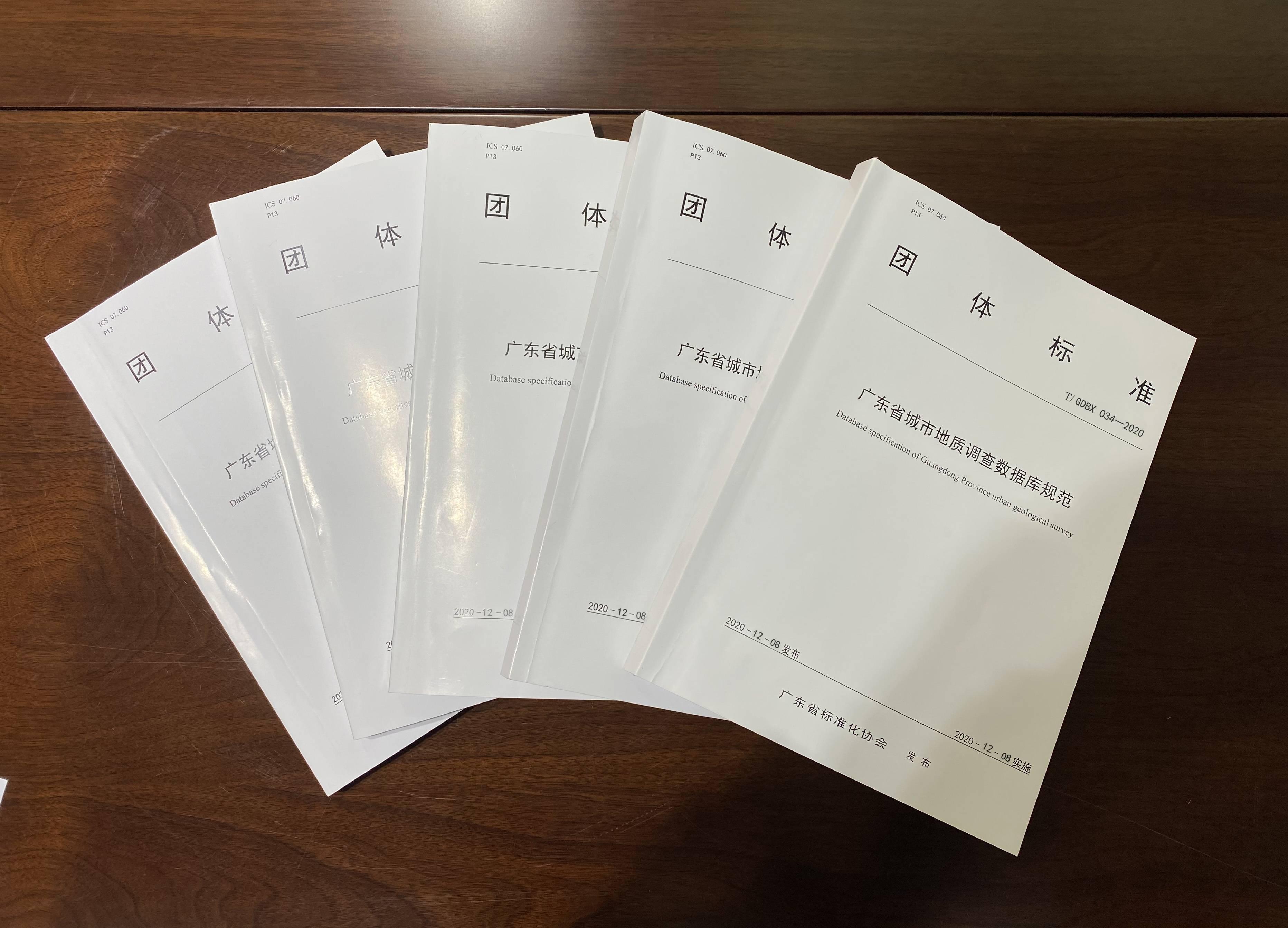 提前防地陷!粤发布国内首个省级城市地质调查数据库规范团标