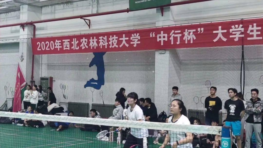 """""""中行杯""""大学生羽毛球联赛来啦'od体育下载'(图1)"""