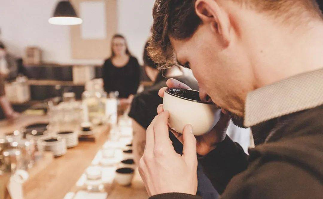 如何更了解咖啡风味? 防坑必看 第2张