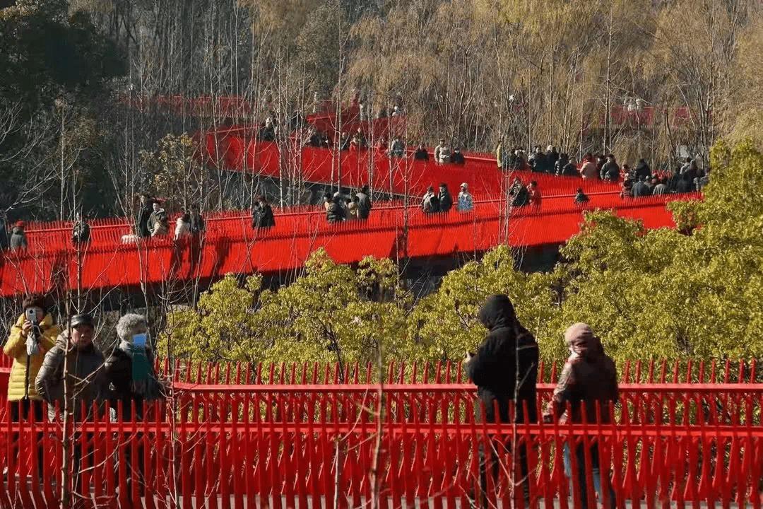 一大波新体验来袭!嘉兴西南湖公园成元旦最红打卡地!