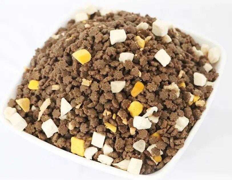 田园猫只配吃国产粮,品种猫才能吃进口?