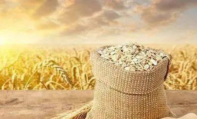 70后拒绝种地,80后不会种地,未来中国农村内的田地由谁种植?  第1张