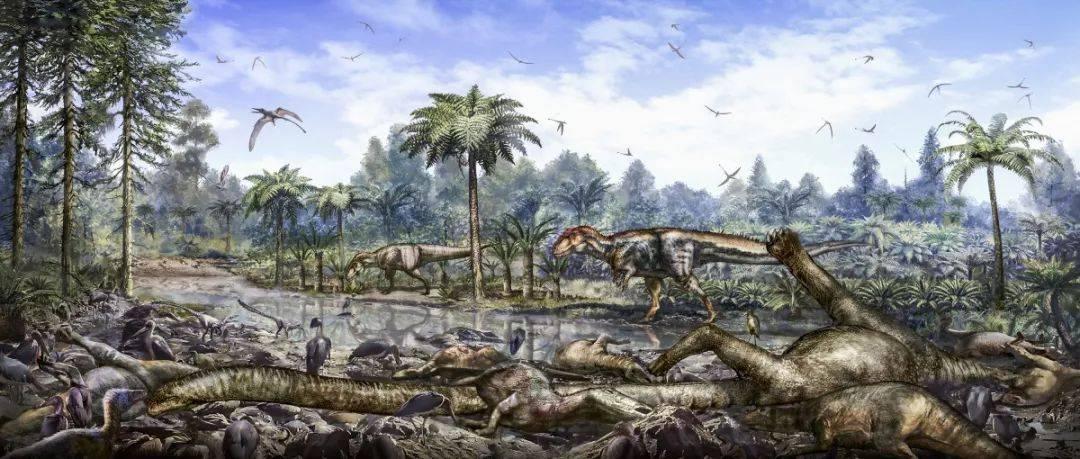 """2020年,重庆新""""诞生""""两种恐龙!都来自这个地方!"""