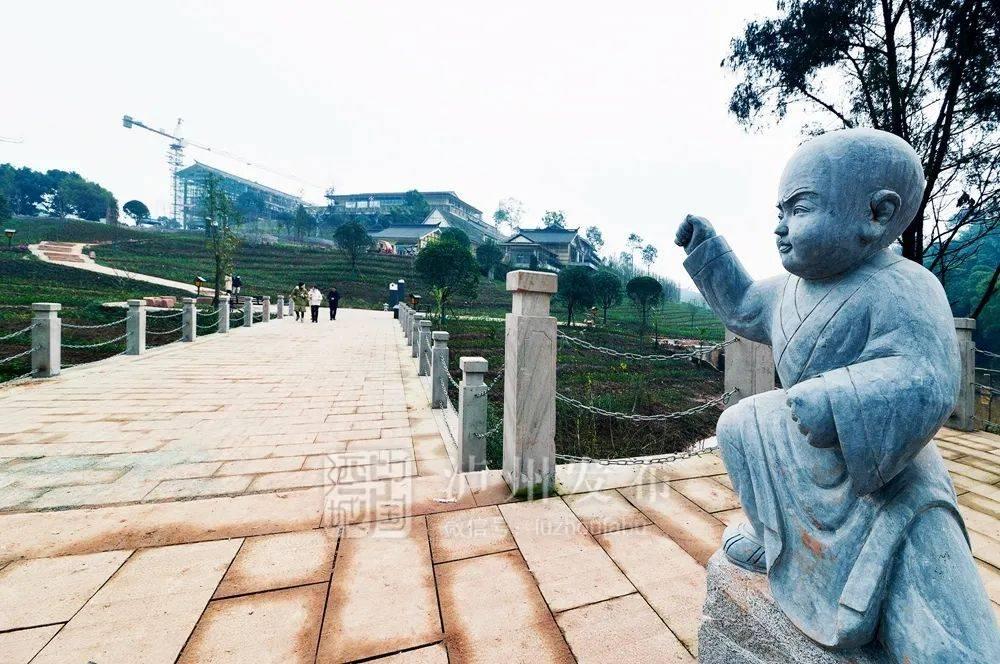 砥砺奋进的五年丨文旅融合,泸州开出幸福城市的绚丽之花