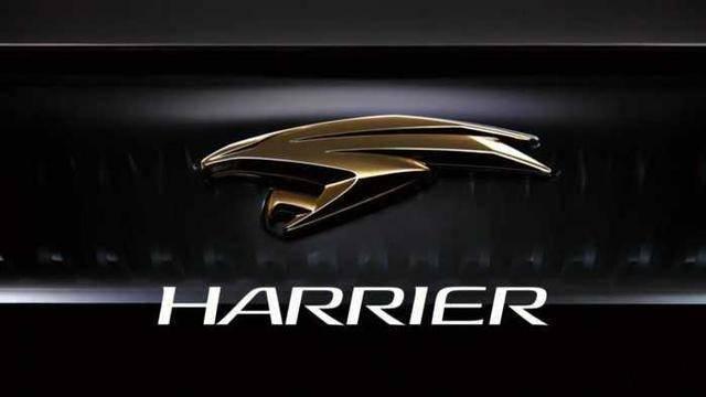 丰田海利亚曝光,比汉兰达便宜,或者18万,新车将在年内发布