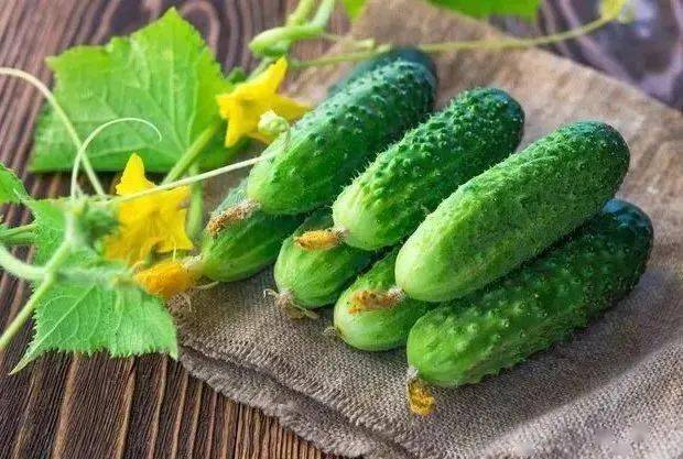 黄瓜除了补水养颜,它还有这6大营养功效!  第1张
