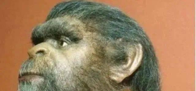 惊!科学家在人体内找到确凿证据,人类的出现或与高级文明密不可分