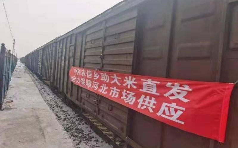 稳价保供 每天300吨大米坐火车供给石家庄
