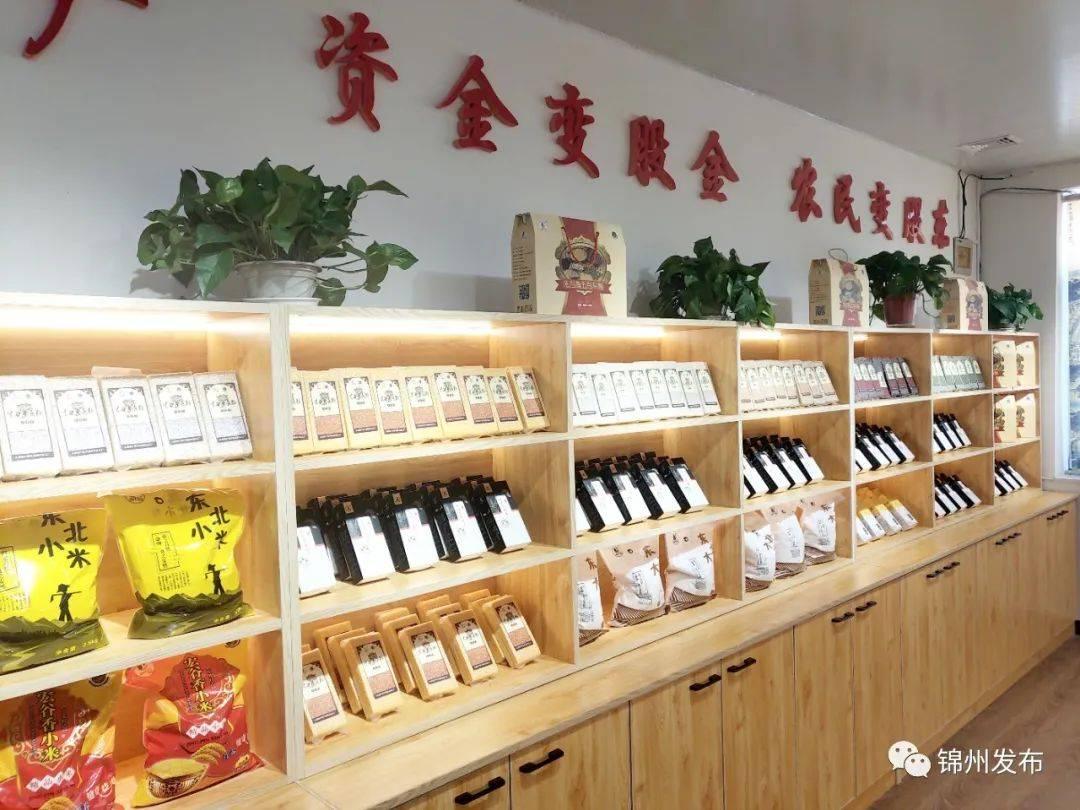 【2020年锦州经济社会发展成就巡礼】义县经济社会发展再结新硕果