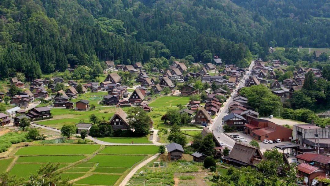 (日本绝景)从古都到雪国---难得一见的京都雪景