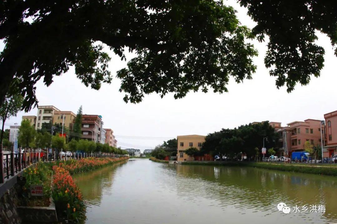 投入近7亿,整治入河排污口158个,水乡洪梅这样治水!