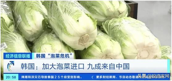 山东偏僻小镇今富得流油:靠2毛钱白菜,掌控韩国90%泡菜生意