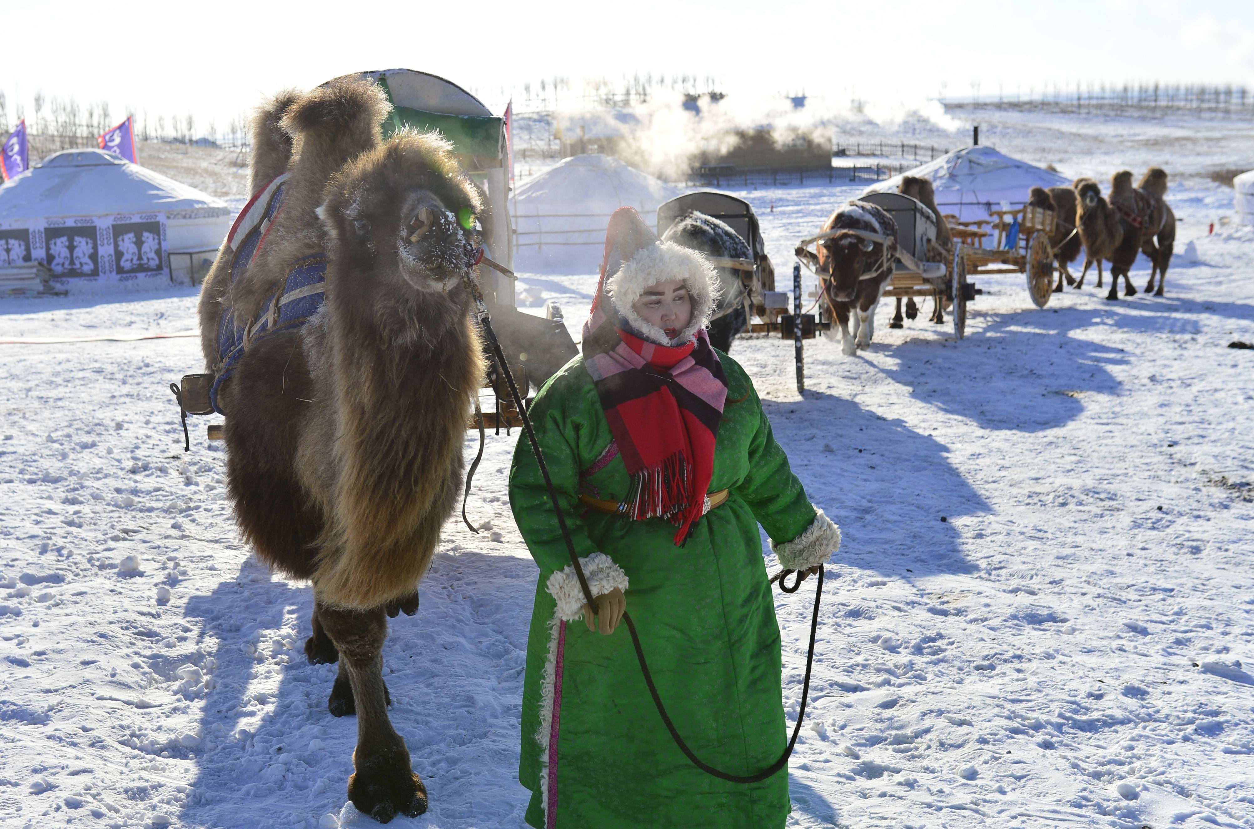 内蒙古呼伦贝尔:草原冰雪旅游引游人