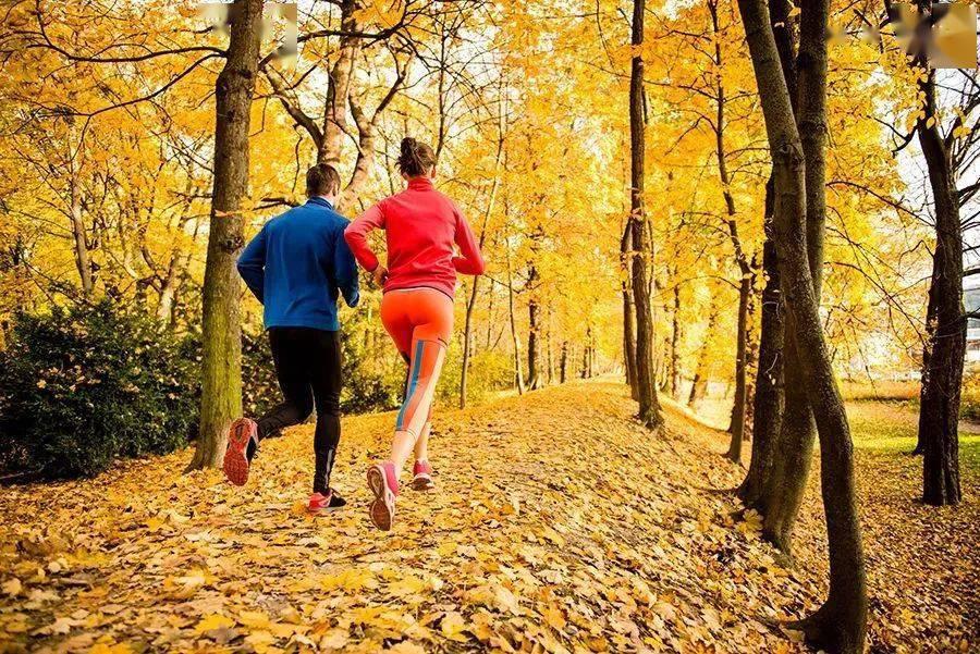 LSD训练+冲刺跑训练,帮你提升跑步耐力
