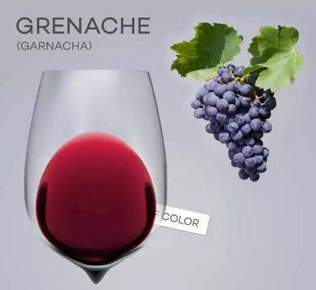 歌海娜葡萄品种特点