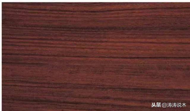 世界上最贵的木材排名(比黄金还贵200倍的木头)