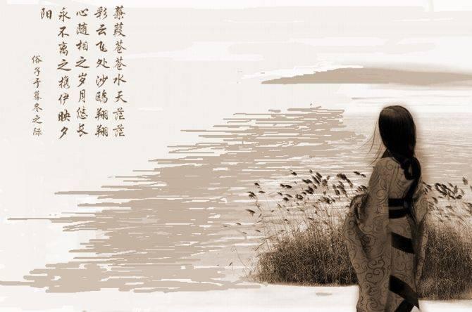 蒹葭翻译全文翻译(诗经蒹葭全文赏析)