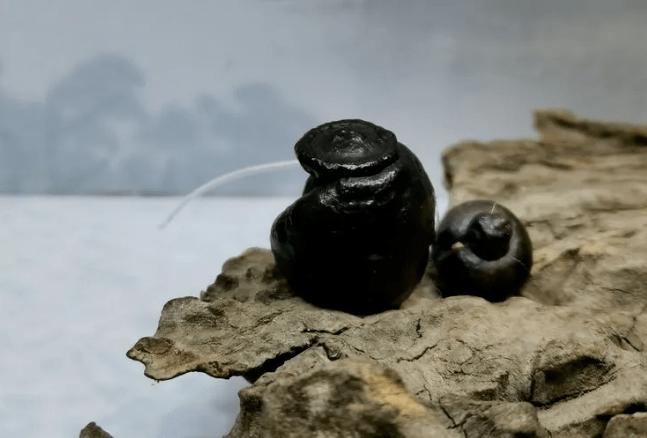 这种黑色石头,最近很火,你玩过吗?