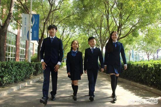 哪个国际学校好(北京口碑最好的国际学校排名)