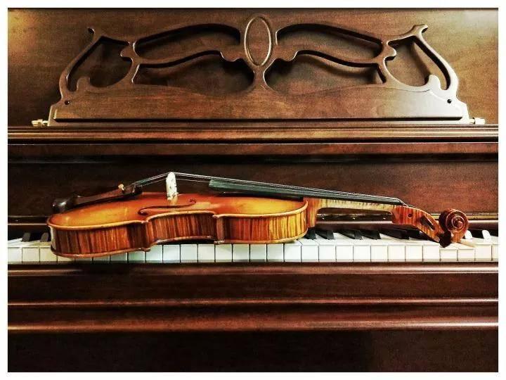 学小提琴烧钱吗(一把小提琴为什么这么贵)插图(7)