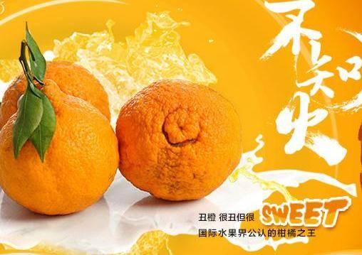 丑橘吃多了会怎样(丑橘真的吃了不上火吗)插图(3)