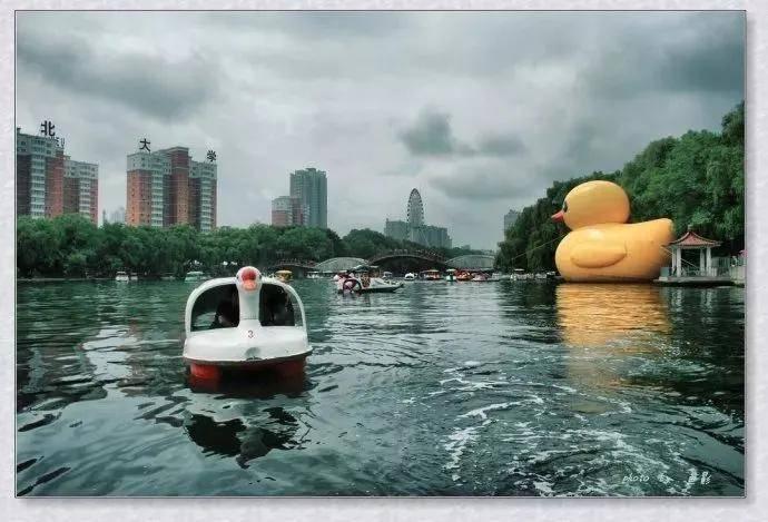 沈阳南湖:童趣和乡愁在这里飘荡!