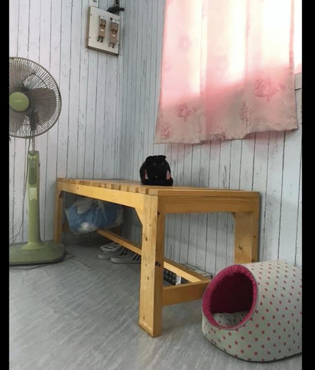 桌子上有一个黑色的正方形,被认为是顾客留下的包。仔细一看就知道是猫!