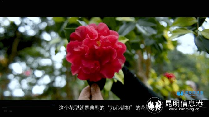 守护未来•COP15系列人物访谈——李溯:让我们这个世界环境更美好 物种更多样