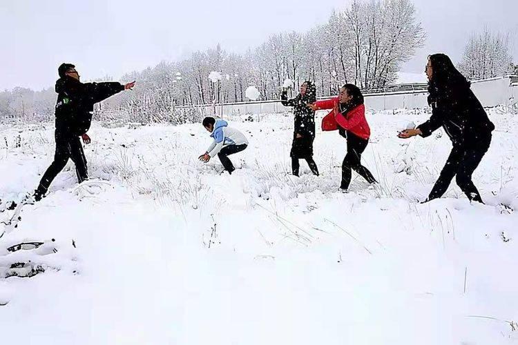 现代诗歌:一场雪落下(外两首)