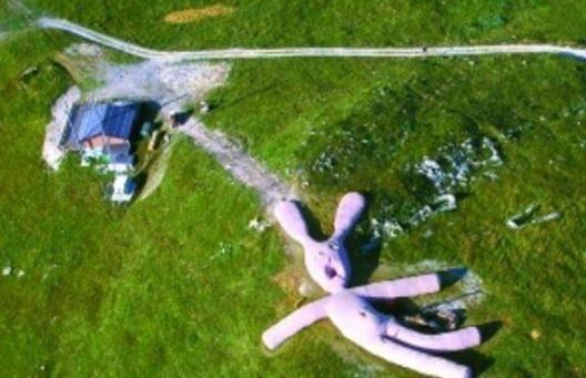世界最可怜的玩偶,因游客过多被提前结束了寿命,成为草地的养料