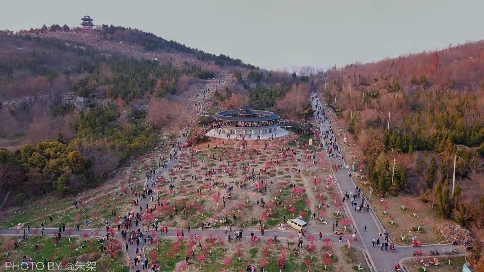 原创             春节假期淮南最火的景点,不是寿县和八公山,而是昙花一现的梅园