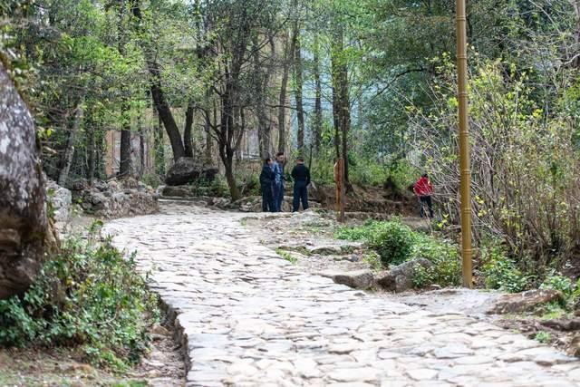 原创             元阳不止有梯田,这个千年老村寨,保留了60座最为原始的蘑菇房