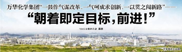 """万华化工集团""""一步到位求改革,一步到位求创新,始终如一地追求新路"""""""
