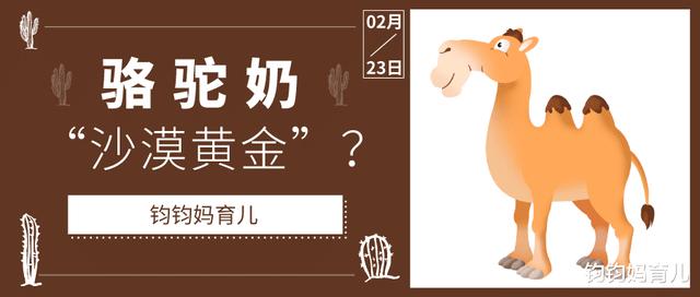 """骆驼奶,原名""""沙漠黄金"""",真的有那么神奇吗?这篇文章必须在购买前阅读"""