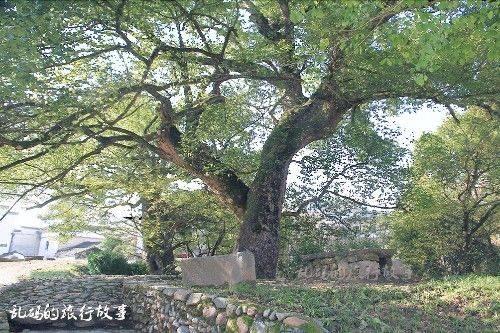 """安徽这个古村风光不输宏村 牌坊堪称中华一绝 被誉""""歙南第一村"""""""